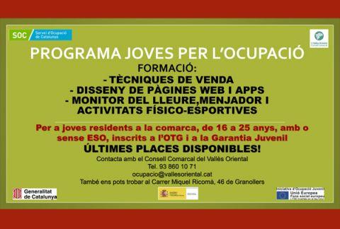 Programa Joves per l'Ocupació