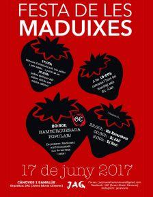 Cartell Festa de les Maduixes